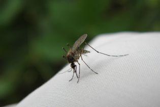 Во Львове медики обнаружили у мужчины опасную форму малярии