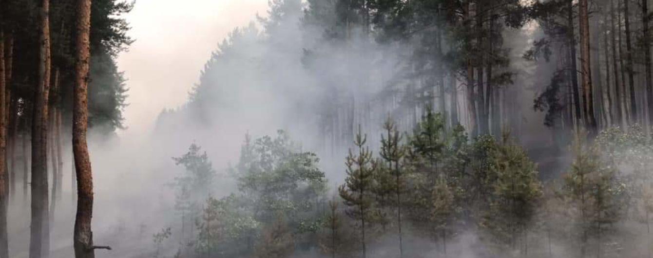 Из-за обстрелов боевиков в Луганской области вспыхнул лесной пожар
