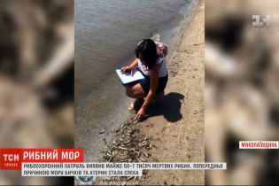 У Миколаївській області зафіксували масову загибель риби