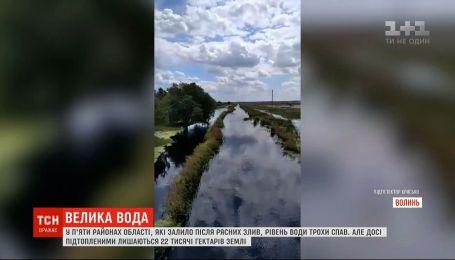Волынь в воде: 22 тысячи гектаров сельскохозяйственных угодий остаются затопленными