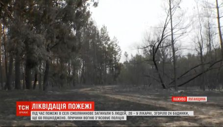 Пожежі у Луганській області: як бути людям без даху над головою