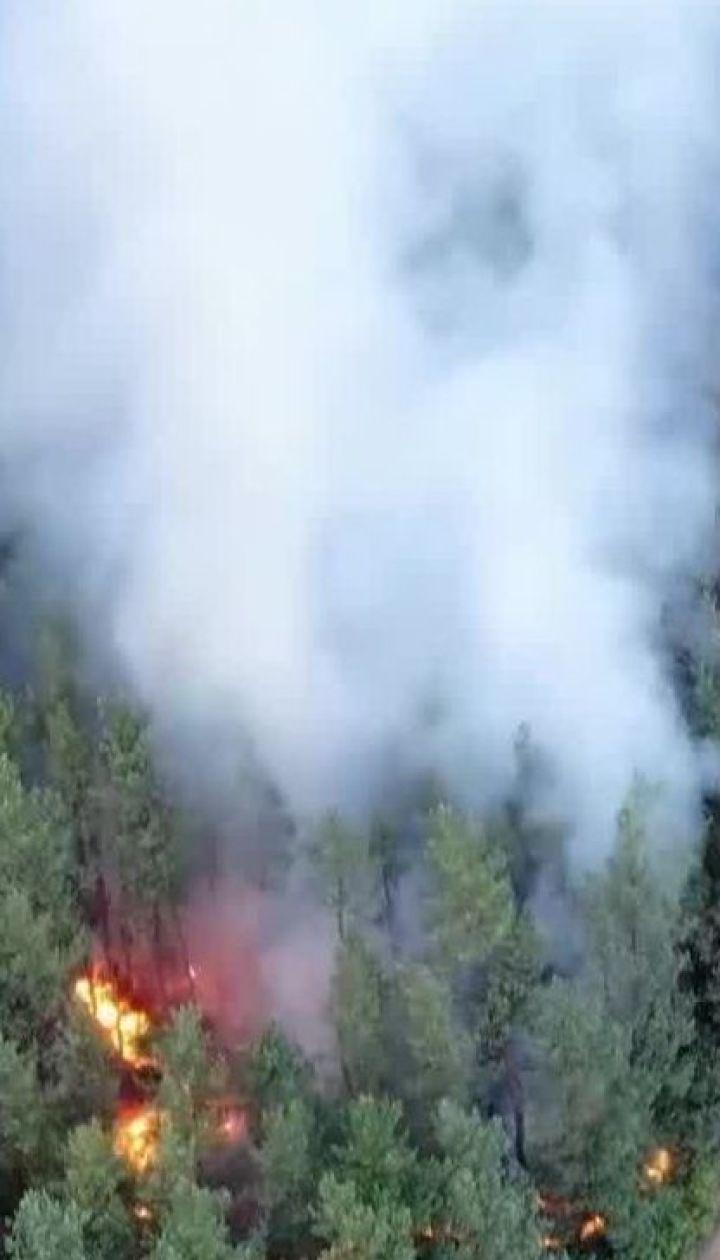 Масштабна пожежа: у Луганській області залишилось 3 осередки тління вогню