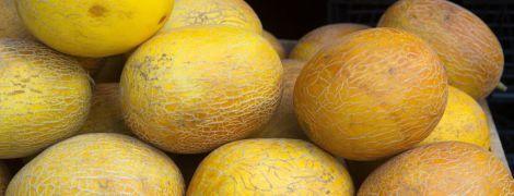 В Україні розпочався сезон дині: скільки коштує жовта ягода