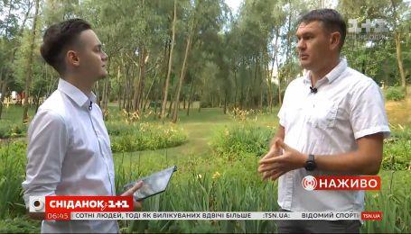 """Сингапур в Киеве: в парке """"Победа"""" установили железные деревья"""
