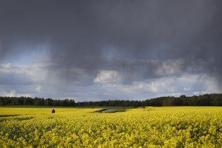 Синоптики оголосили штормове попередження на вихідні