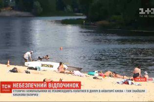 На столичных пляжах обнаружили кишечную палочку - коммунальщики не рекомендуют купаться