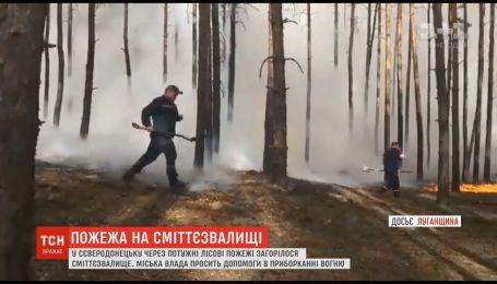 В Северодонецке из-за мощных лесных пожаров загорелась свалка мусора