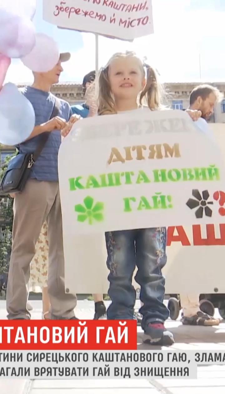 """""""Кияни! Збережімо каштани!"""": столичні активісти борються проти забудови Сирецького гаю"""