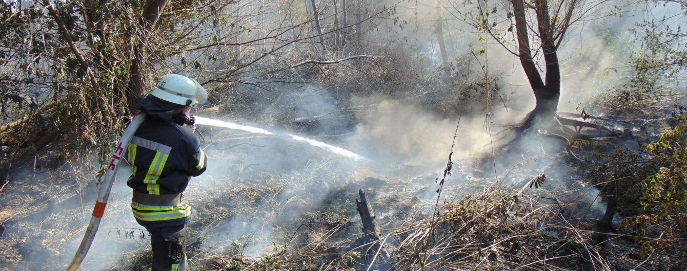 В Луганской области продолжают тушить лесной пожар: древесина тлеет на отдельных участках