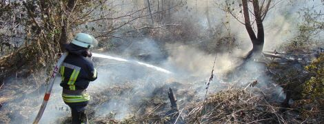 У Луганській області продовжують гасити лісову пожежу: деревина тліє на окремих ділянках