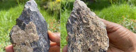 В Ефіопії знайшли рідкісне ашельське рубило з кістки бегемота віком 1,4 мільйонів років
