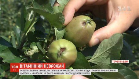 Погодные условия и логистика: почему импортные фрукты дешевле, чем украинские