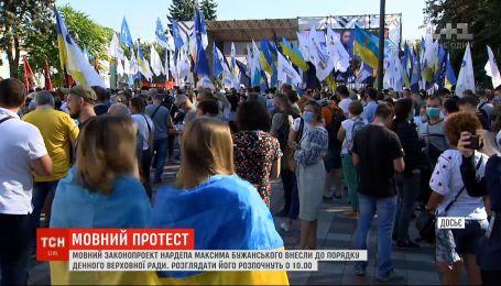 Языковой законопроект Бужанского внесли в повестку дня Рады