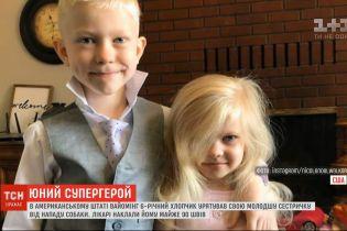 Шестилетний герой: мальчик спас свою младшую сестру от нападения собаки