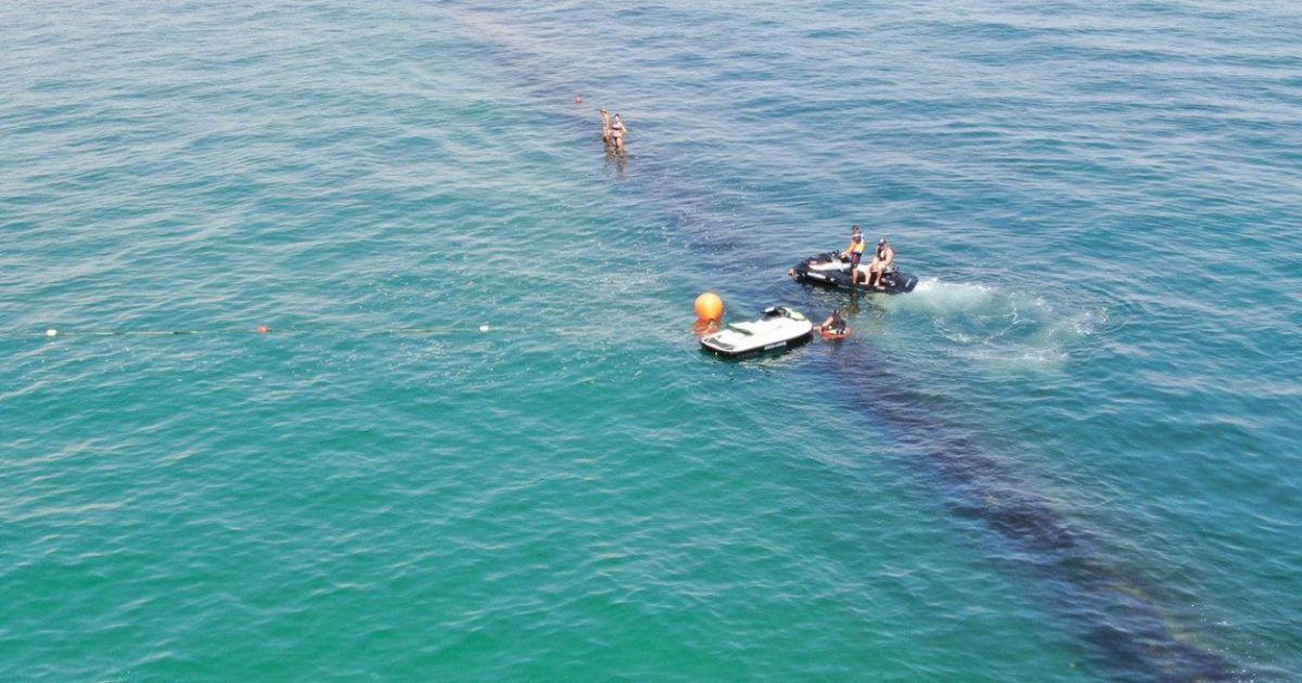 На одесском пляже между волнорезами застряло шесть дельфинов, которые не могут выбраться из ловушки