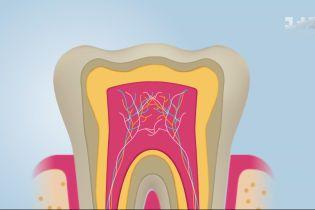 Чому в природі не буває ідеально білих зубів та як вберегти природну білизну