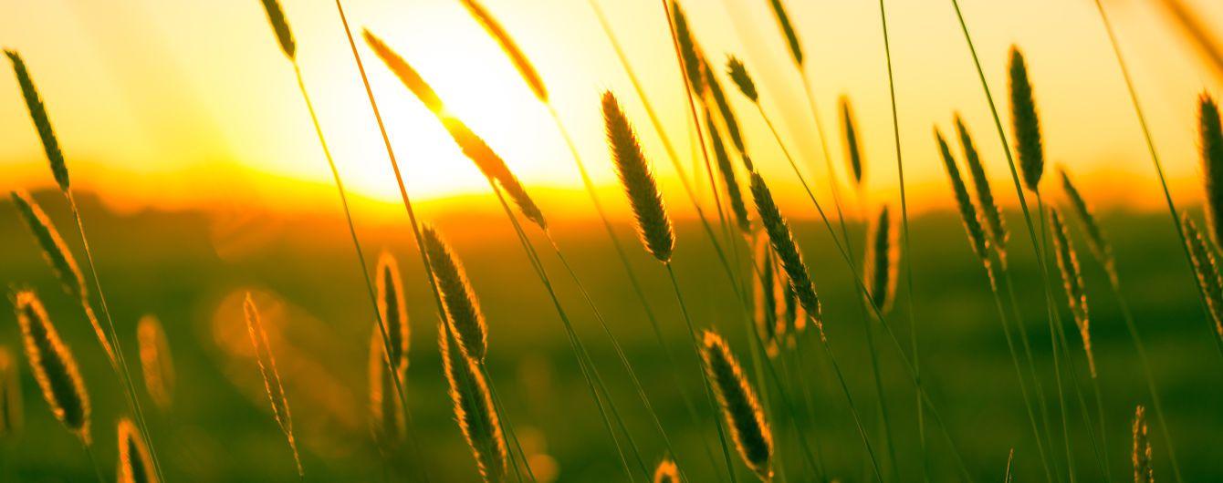 11 августа: интересные обычаи, обряды и народный прогностик