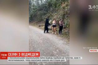 В Мексике медведь изрядно напугал туристок, когда те фотографировались