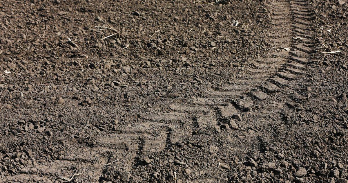 Під Чернівцями під колесами трактора загинула 9-річна дівчинка