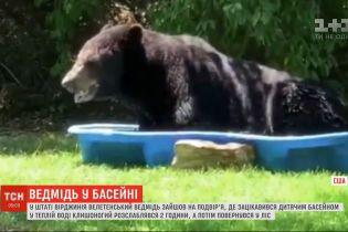 Неожиданный гость: в США огромный медведь устроил спа-процедуры в одном из дворов