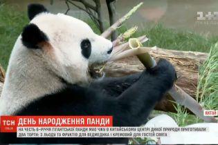 У Китаї влаштували гучне свято на честь 6-річчя великої панди