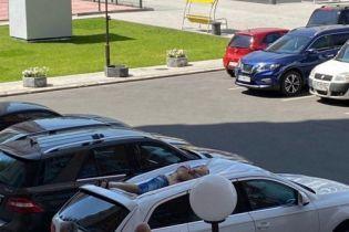 В Харькове мужчина выпал из окна на припаркованные авто