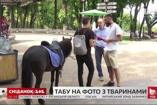 Київська влада заборонила фотографування з екзотичними тваринами на вулицях міста
