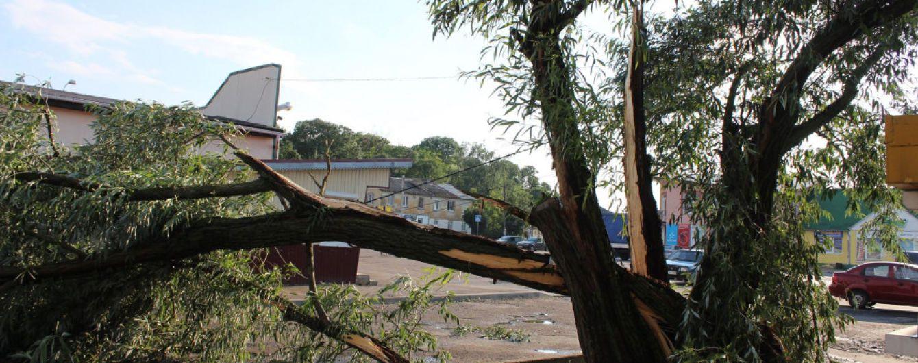 Улицы превратились в реки, поваленные деревья и линии электропередач: запад Украины сильно пострадал от ливня и урагана