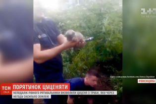 Недалеко от Ровно спасатели освободили щенка из трубы, которую засыпало землей