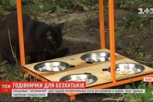 """У Львові встановили """"котівнички"""" для годування безпритульних котів"""