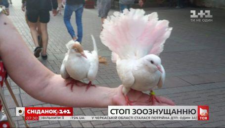 Подействовал ли в Киеве запрет на фото с животными