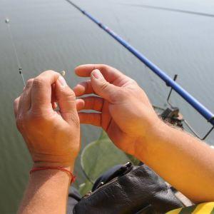 В Госрыбагентстве подсчитали, сколько в Украине с начала года выловили рыбы