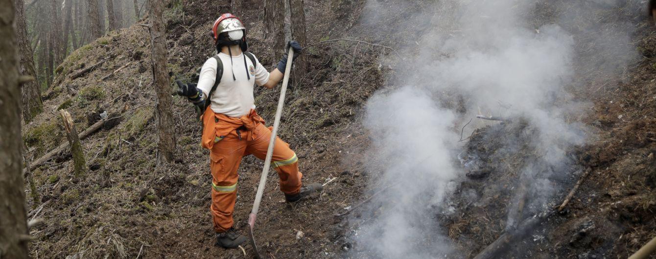 У Греції спалахнули лісові пожежі: евакуйовано три села