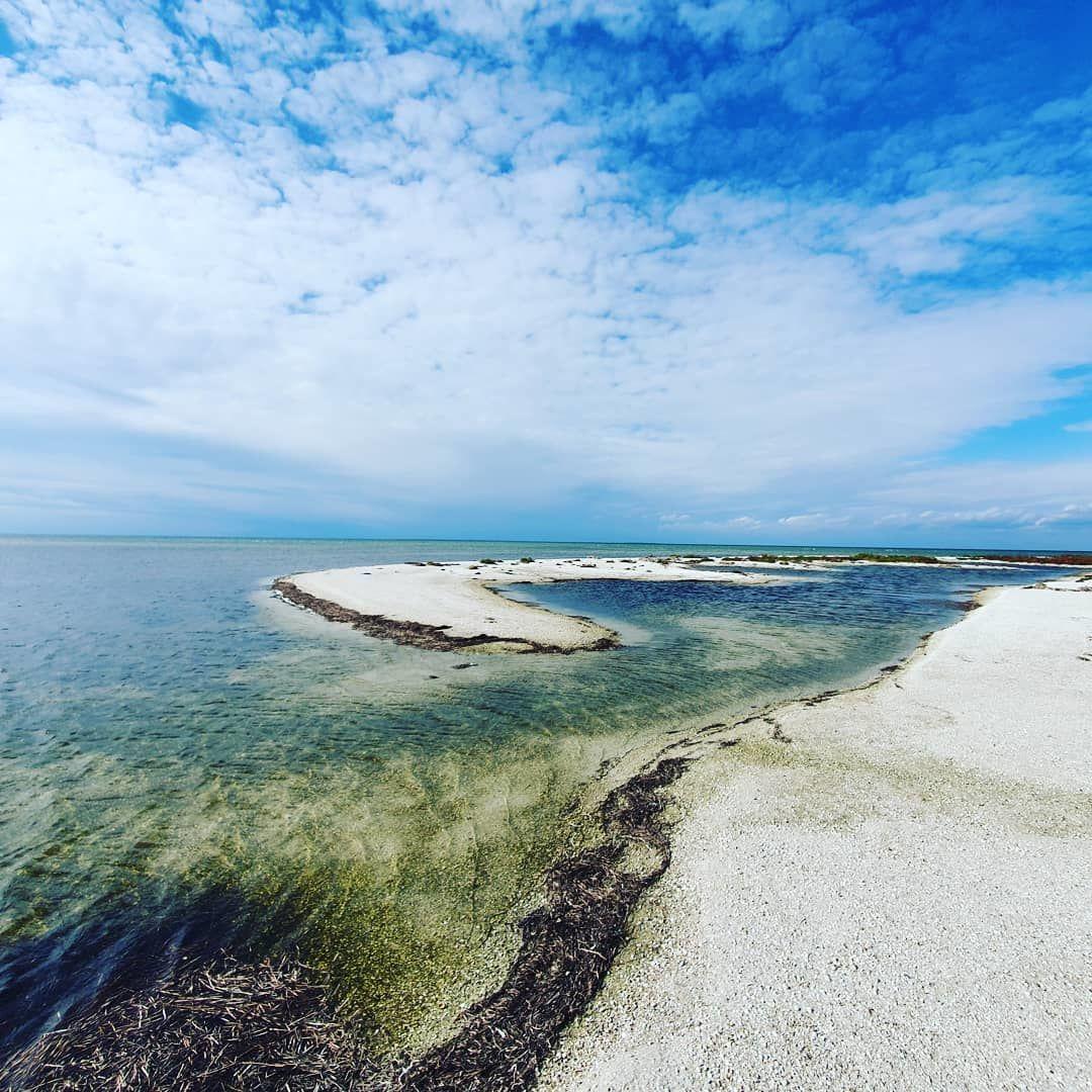 остров бирючий 1