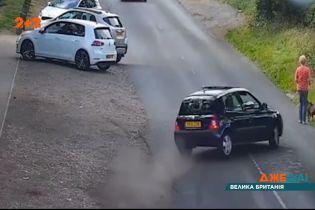 В Британии водитель снес женщину, которая выгуливала собаку
