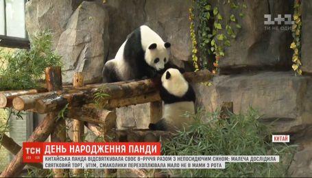 Панда Цзя-Цзя відсвяткувала день народження разом з непосидючим сином