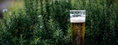Міжнародний день пива: що за свято, де святкують та історія напою