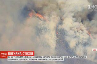 У Каліфорнії вирують пожежі: вигоріло 60 гектарів чагарників