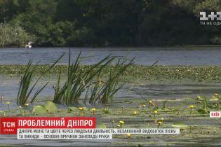 Проблемний Дніпро: річка вкрилася піщаними мілинами