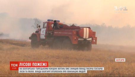 Кордон у вогні: на межі Болгарії та Туреччини не вщухають лісові пожежі