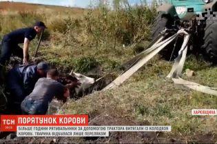 В Харьковской области спасатели доставали корову из заброшенного колодца
