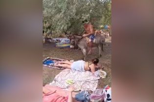 В Одесі небайдужа жінка привернула увагу до знущання з віслюка