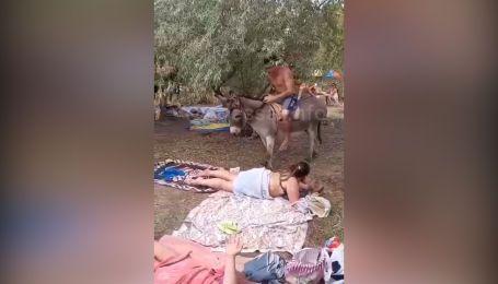 В Одессе небезразличная женщина привлекла внимание к издевательствунад ослом
