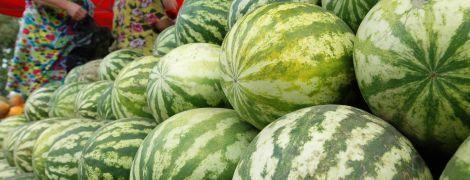 В Украине с начала недели подешевели арбузы: сколько стоит полосатая ягода