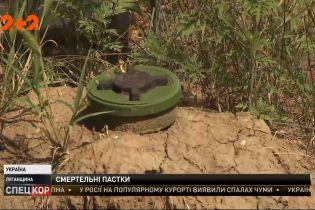 Неразорвавшиеся заряды и снаряды от гаубиц: как проходит разминирование в прифронтовых зонах