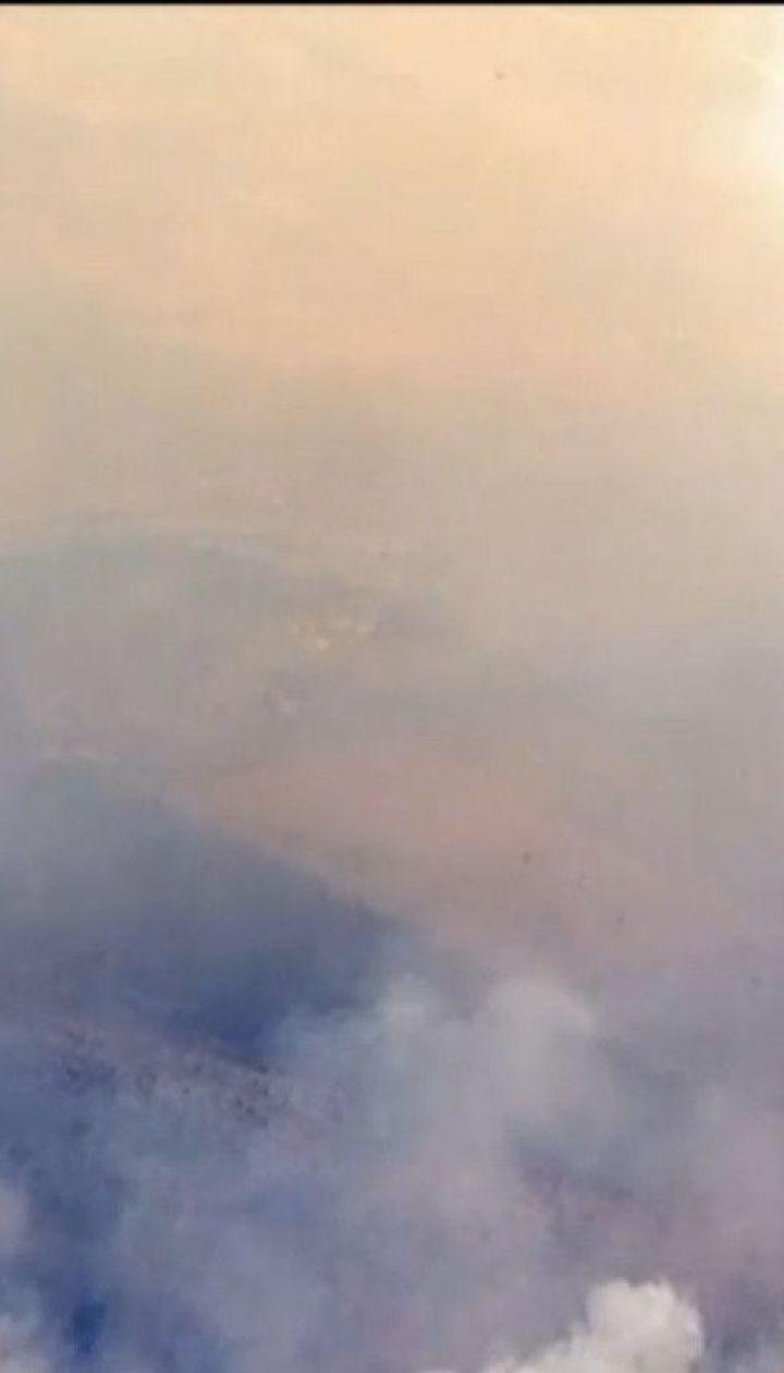 У Каліфорнії за добу втричі збільшилася площа лісових пожеж
