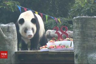 У Китаї відсвяткувала день народження найстарша панда у світі