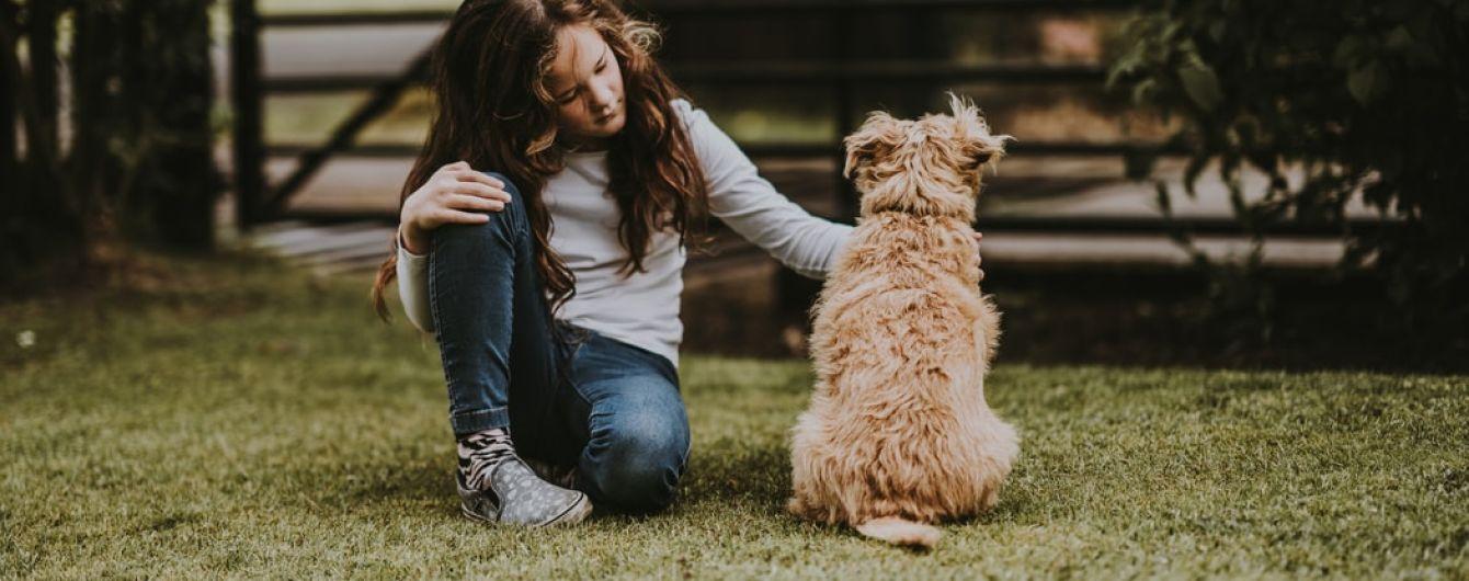 До 14 лет самостоятельно выгуливать собак запрещено: полиция напомнила правила ухода за четвероногими