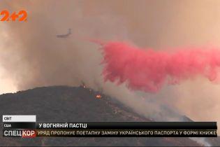 В Калифорнии горят леса и кустарники: людей принудительно эвакуируют