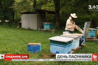 День украинского пасечника: как выбрать лучший мед и сколько он будет стоить
